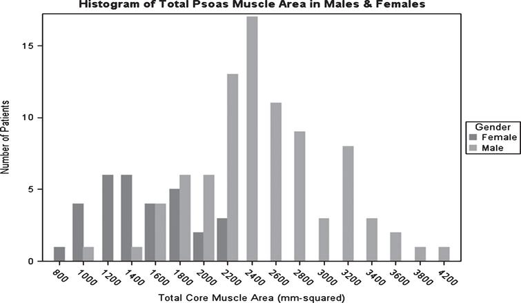 Histograms of psoas muscle area and lean  psoas muscle area in males & females. Total psoas muscle area in men on average was greater than women. The  total psoas muscle area range in men was 1000–4200 mm2, while in women the total psoas muscle  area range was 800 to 2200 mm2.