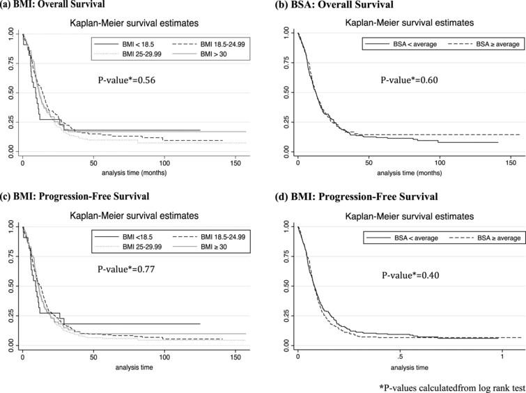 Kaplan-Meier curves: Overall Survival and Progression-Free Survival across BMI and BSA Categories.