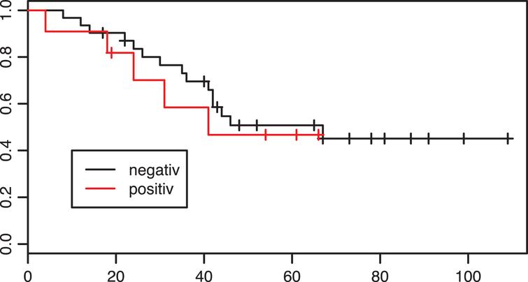 Kaplan-Meier estimates of survival according to PD-L1 tumor status in the adjuvant group. X axis: Overall survival in months. p=0.63.