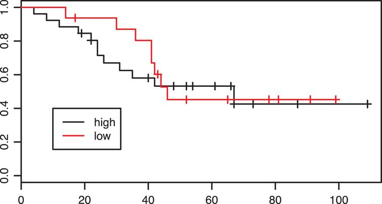 Kaplan-Meier estimates of survival according to intratumoral CD8 infiltration density in the adjuvant group. p=0.71.