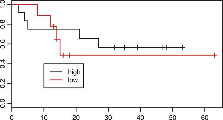 Kaplan-Meier estimates of survival according to intratumoral CD8 infiltration density in the neoadjuvant group. p=0.61.
