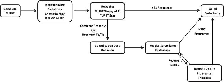 Pictographic representation of continuous-course trimodal therapy regimen.