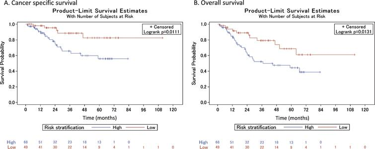 Cancer-specific and overall survival among high- and low-risk patients who did receive neoadjuvant chemotherapy.