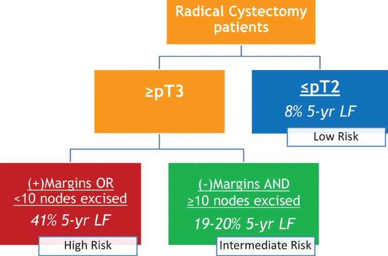 PENN risk stratification for predicting local-regional recurrence after radical cystectomy.