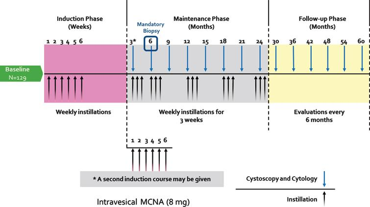 MCNA instillation and followup protocol. A 6-weekly induction phase (8 mg in 50 mL) was followed by a maintenance phase in which patients received 3 or 6 (re-induction) weekly MCNA instillations at month 3 followed by 3 weekly instillations each at months 6, 12, 18 and 24, and 36. During the follow-up phase, cystoscopic evaluations and urine cytologies were conducted every 6 months. (Figure adopted from Morales et al. [1]).