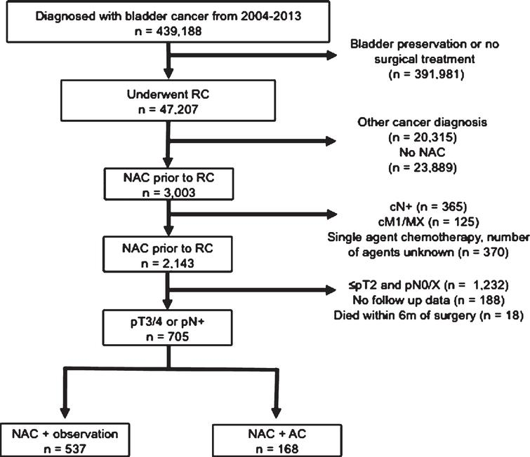 Inclusion and exclusion criteria of pT3/4 or pN+ patients who underwent NAC and RC from the 2004–2013 NCDB.