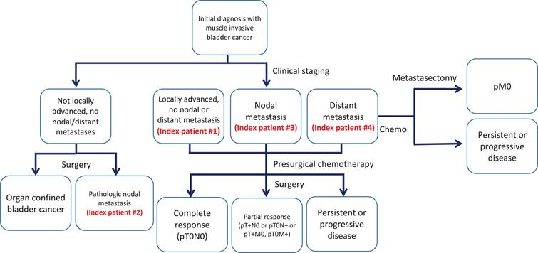 Flow diagram of patient categories and method of therapy.