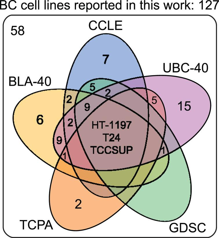 Venn diagram of human bladder cancer cell lines analyzed in five panels. 127 human BC cell lines are present in five panels. The overlap between different molecular panels is visualized. Only HT-1197, T24 and TCCSUP have been profiled in all five panels. CCLE: The Cancer Cell Line Encyclopedia; UBC-40: Urothelial Bladder Cancer-40; GDSC: Genomics of Drug Sensitivity in Cancer; TCPA: The Cancer Proteome Atlas; BLA-40:Bladder-40.