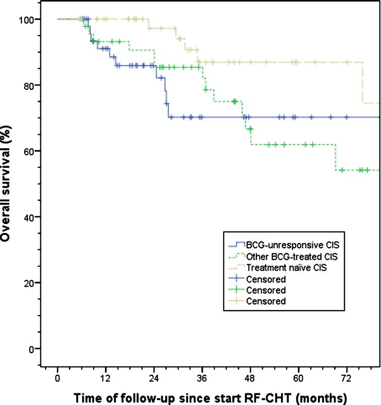 Observed overall survival split by treatment history. A trend towards a significant difference between other BCG-treated and treatment naïve CIS patients was observed, p = 0.06. BCG, bacillus Calmette-Guérin; CIS, carcinoma in situ; RF-CHT, radiofrequency-induced chemohyperthermia.