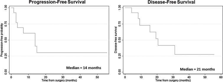 Kaplan-Meier survival plots for cancer-specific survival for the entire cohort.