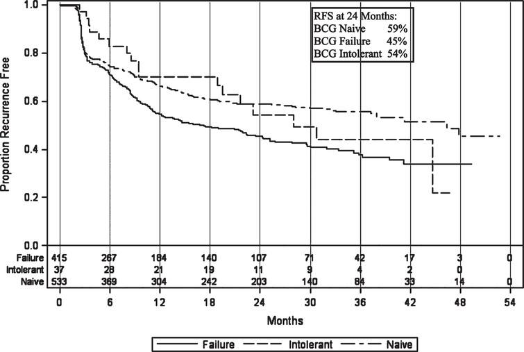 Recurrence-free survival in patients treated with BCG plus Interferon therapy.