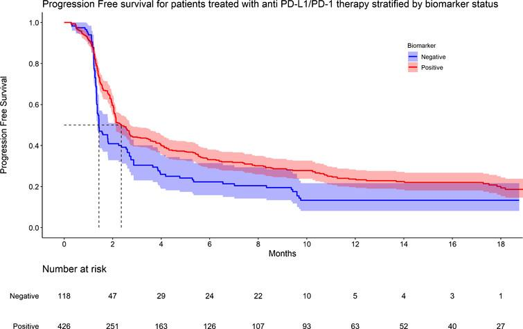 KM graph of progression survival for patients treated with anti PD-L1/PD-1 therapy stratified by biomarker status.