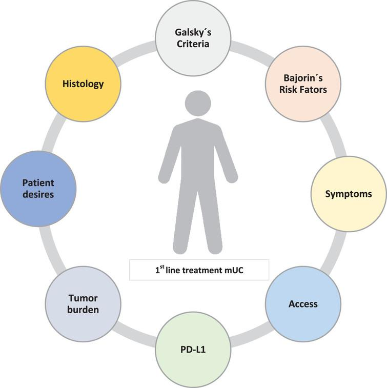 Factors that may condition for therapeutic decision.