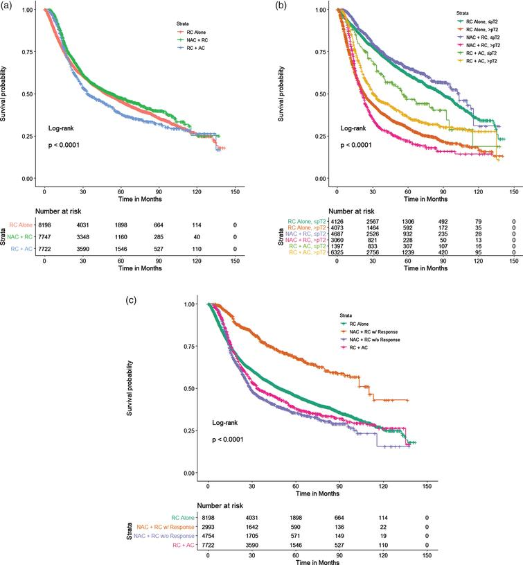 PS-adjusted Kaplan Meier analysis of overall survival for patients treated with NAC+RC vs RC alone vs RC+AC stratified by (a) treatment type, (b) pathological stage (≤pT2 vs. >pT2), and (c) treatment type and response to NAC.