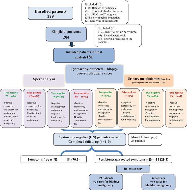 Study flow chart.