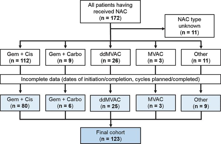 CONSORT (Consolidated Standards of Reporting Trials) diagram shows study cohort of 123 patients who received NAC and underwent RC for MIBC.