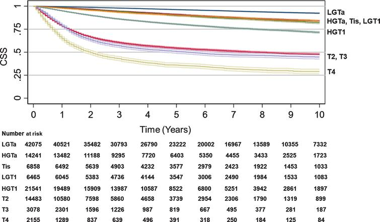 Cancer-specific survival by T stage. Kaplan-Meier analyses were performed to estimate CSS from time of diagnosis to censorings or death using SEER data with LGTa as a reference. Blue (LGTa), maroon (HGTa), green (Tis), orange (LGT1), teal (HGT1), red (T2), purple (T3), yellow (T4). Shading represents 95% CI. For SEER, OS hazard ratios, 95% CI, and p values when compared to LGTa were HGTa (1.94, CI 1.81–2.08, p<0.001), Tis (2.28, CI 2.09–2.47, p<0.001), LGT1 (2.30, CI 2.11–2.51, p<0.001), HGT1 (4.24, CI 4.01–4.47, p<0.001), T2 (12.18, CI 11.57–12.82, p<0.001), T3 (14.60, CI 13.63–15.64, p<0.001), and T4 (22.76, CI 21.19–24.44, p<0.001).