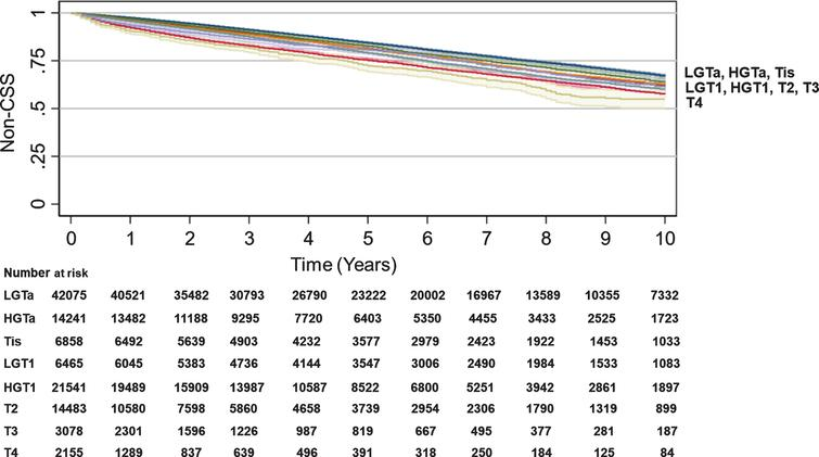Trend in Non-cancer-specific survival by BC T stage. Kaplan-Meier analyses were performed to estimate Non-CSS using SEER data with LGTa as a reference. Blue (LGTa), maroon (HGTa), green (Tis), orange (LGT1), teal (HGT1), red (T2), purple (T3), yellow (T4). Shading represents 95% CI. For SEER, OS hazard ratios, 95% CI, and p values when compared to LGTa were HGTa (1.01, CI 0.97–1.05, p=0.735), Tis (0.99, CI 0.94–1.05, p=0.812), LGT1 (1.15, CI 1.09–1.21, p<0.001), HGT1 (1.14, CI 1.10–1.18, p<0.001), T2 (1.44, CI 1.38–1.50, p<0.001), T3 (1.39, CI 1.28–1.52, p<0.001), T4 (1.77, CI 1.60–1.96, p<0.001).