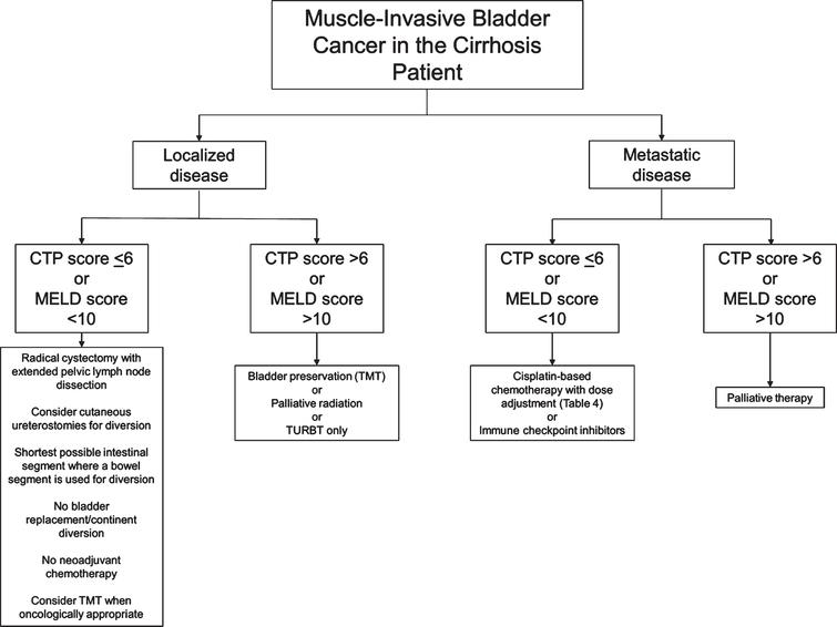 Flow chart of suggested considerations for patients with muscle-invasive bladder cancer and cirrhosis. Developed at McMaster University. CTP: Child-Pugh-Turcotte; MELD: Model for End-Stage Liver Disease; TMT: Trimodal therapy; TURBT: Transurethral resection of bladder tumour.