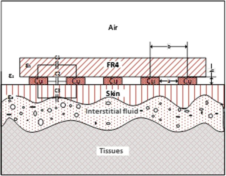 Electrical model of human tissues.