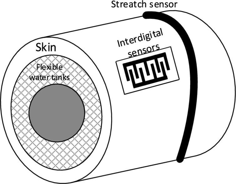Experimental model with stretch sensor.