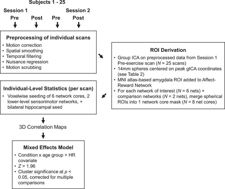 Overview of data analysis at both individual and group levels.