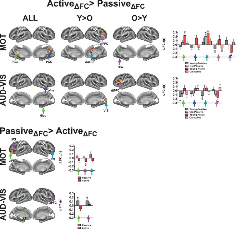 Control analysis for demonstrating the specificity of acute exercise effects toward higher-level cognitive networks. In this control analysis, we examined acute exercise effects on two networks related to sensory and motorprocesses. The colored arrows in the bar graphs correspond to the arrows in the brain surface. The asterisks (*) in indicate regions exhibited a significant change from the pre-exercise FC for each condition based on a two-tailed, one-sample t-test, p<0.05, uncorrected. Refer to Tables 4 and 5 for anatomical descriptions of significant clusters, MNI coordinates, and statistical scores. Network templates are shown for reference, and the colors correspond to Fig. 3. All results are significant at Z>1.96 and p<0.05, corrected for multiple comparisons.
