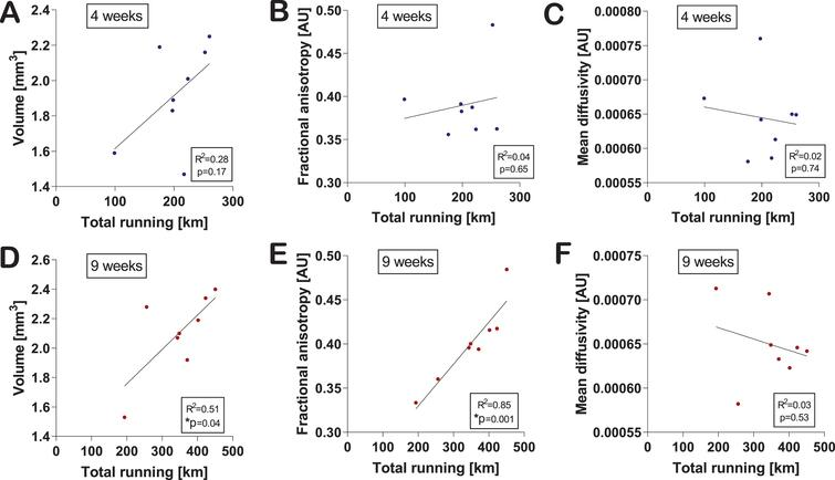 Changes in hippocampal volume and microstructure correlate with exercise level. Correlations of hippocampal volume (A), fractional anisotropy (B), and mean diffusivity (C) with the total amount of running at four weeks were calculated using the two-tailed Pearson correlation test. An individual dot represents one mouse. Data are expressed as mean ± SEM. Correlations of hippocampal volume (D), FA (E), and MD (F) with the total amount of running at nine weeks were calculated using the two-tailed Pearson correlation test. An individual dot represents one mouse. Data are expressed as mean ± SEM. Asterisks highlight significant correlations (*p<0.05).