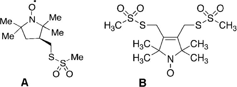(A) MTSSL (2,5-dihydro-3,4-bis(methanesulfonylthiomethyl)-2,2,5,5-tetramethyl-1H-pyrrol-1-yloxyl radical) and (B) bis-MTSL (trans-3,4-bis(methanesulfonylthiomethyl)-2,2,5,5-tetramethylpyrrolidin-1-yloxyl radical) spin labels, commercially available from Toronto Research Chemicals, 2 Brisbane Rd., Toronto, Ontario, Canada M3J 2J8.