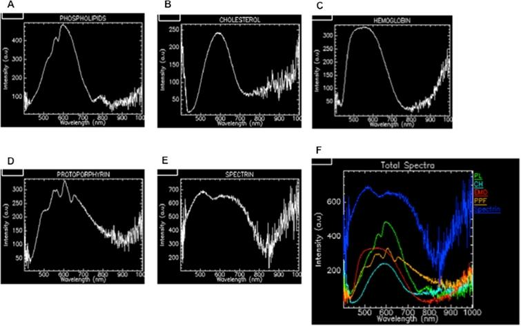 HDFM spectra of five representative components of red blood cells prepared in solution or suspension as described in Section 2: (A) phospholipids as egg lecithin liposome; (B) cholesterol; (C) hemoglobin; (D) protoporphyrin IX; (E) spectrin. The spectrum (F) shows all the spectra with arbitrary color code for RBC mapping as shown in Fig. 2(E).