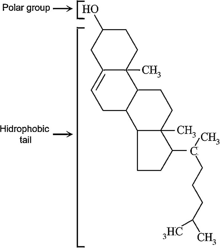 Cholesterol chemical structure.