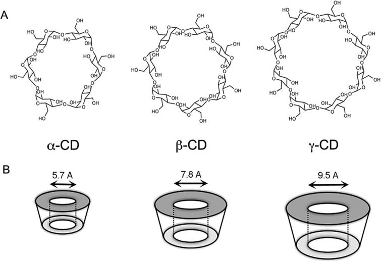 (A) Chemical structures of the three different types of cyclodextrin, alpha (α) – containing 6 glucopyranose units, beta (β) – containing 7 glucopyranose units and gamma (γ) – containing 8 glucopyranose units. (B) Representative images of the rings formed by the three different cycodextrins and the respective size of their pockets.