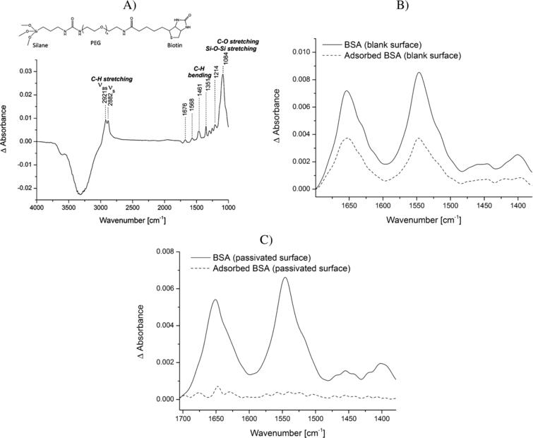 Analysis of the adsorption of BSA to the blank vs. the PEG-silane passivated ATR crystal surface. A)Structural formula of the biotin-PEG-silane linker and a representative spectrum of the biotin-PEG-silane modified surface in water. The reference spectrum is water. Typical vibrational modes are highlighted. B)BSA (5mg/ml) was incubated for 20min on the blank surface. Spectra were recorded before (continuous line) and after (dotted line) washing the surface several times with water. The reference spectrum is water. C)BSA (5mg/ml) was incubated for 20min on the PEG-silane modified surface. Spectra were recorded before (continuous line) and after (dotted line) washing the surface several times with water. The reference spectrum is the PEG-modified surface in water.