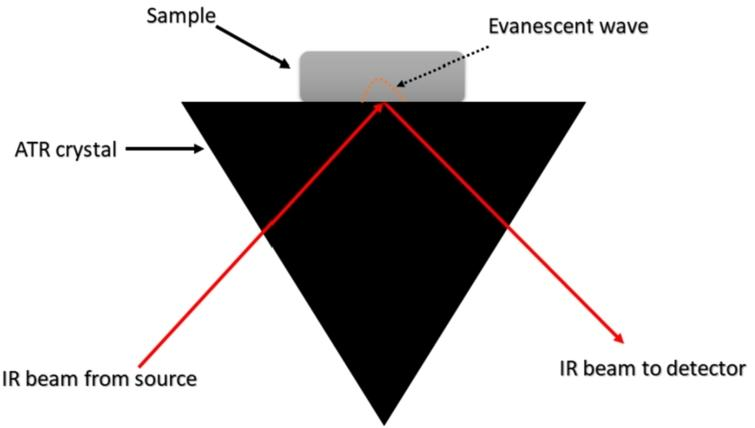 Illustration of the operation of the ATR device in spectral acquisition. An evanescent wave is generated by the total reflection of the incident radiation. This evanescent wave can penetrate through a few micrometres in the sample, which absorbs part of the radiation. This absorption can be detected by the instrument, generating the spectrum. Inspired by reference [35].