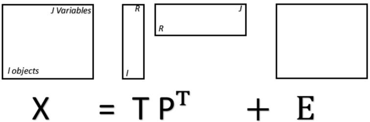 Matrixial representation of the PCA model, where X is a matrix with rows representing spectra and columns representing spectral variables (wavenumbers). T is a matrix containing the PCA scores, P is a matrix containing the PCA loadings, and E is a residual matrix. Superscript T represents the matrix-transpose operation.