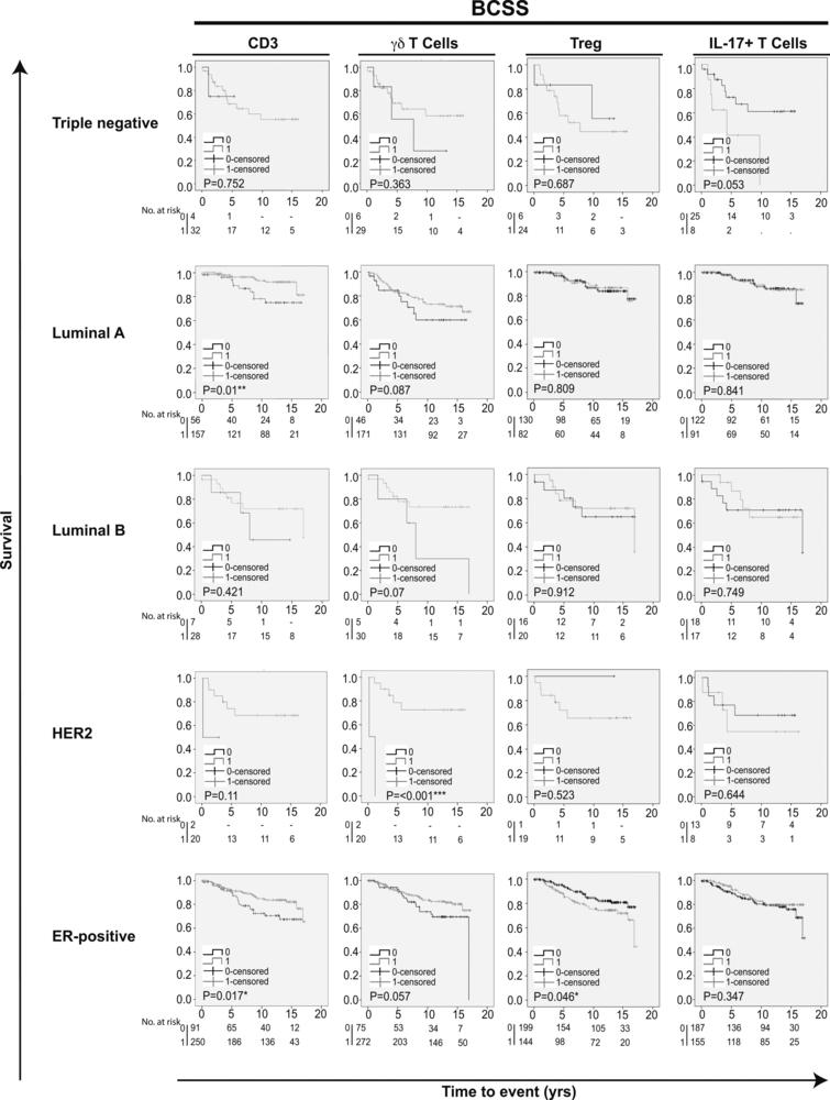 Kaplan-Meier estimates of breast cancer specific survival according to different infiltrating T cell subpopulations in breast cancer. Impact of pan-T cell CD3, γ⁢δ T cells, Tregs and IL-17+ T cells on BCSS in different breast cancer subtypes. Log-rank P value < 0.05 was considered significant.