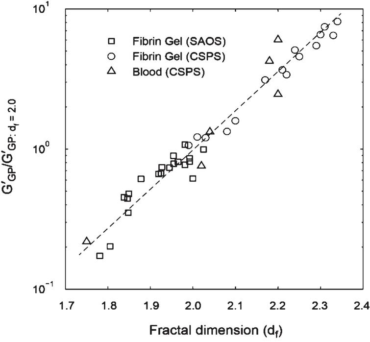 Structure-function relationship in terms of df and incipient clot elasticity for whole blood (CSPS) and fibrin gels (in SAOS and CSPS tests). The values of G′GP and G∥GP′ are normalized by their respective values at df= 2.0. The SAOS results for fibrin gels result from a progressive increase in thrombin concentration at a fixed value of fibrinogen concentration [φ= 0.01 to 0.19 NIH/ml, c = 10 mg/ml].