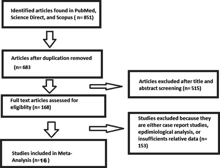 Flow diagram of the study selection process.
