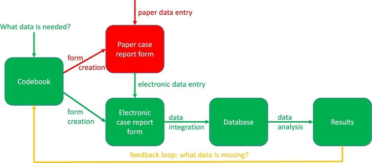 The clinical data collection process.