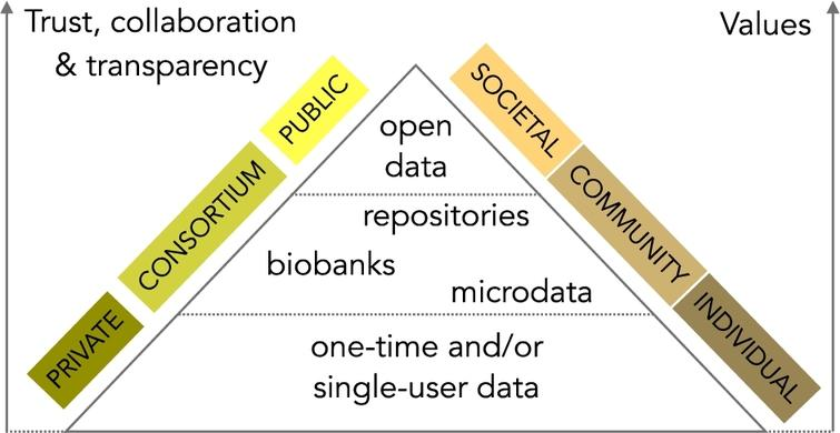 The hierarchical value of health and health-related data.