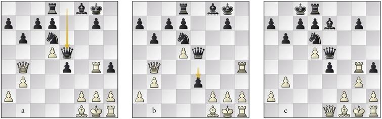 (a) position 15w, (b) variation position 16w, (c) position 17w.
