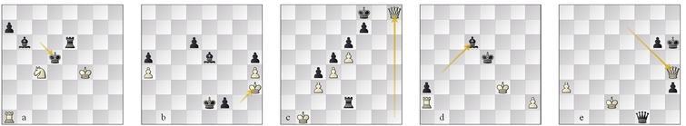 L3 (a) g35 Seer–Weiss 60.Nxb6??, (b) g75 Marvin–Pirarucu 67...f1=Q(/B)#; L2 (c) g17 Seer–Defenchess 67...Ke7 force, (d) g24 Defenchess–Winter RP-bp win, (e) g49 Nemorino-Minic 76...Kg7 force.
