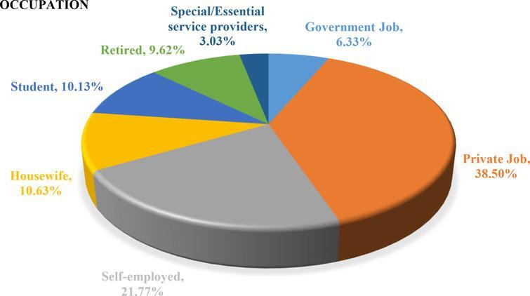 Occupation distribution.