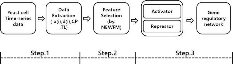 Overview of the proposed process with NEWFM.
