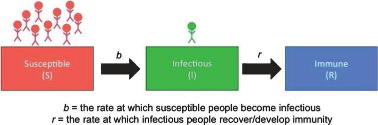 SIR model for epidemic diseases.