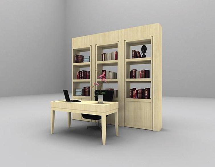 The bookcase model.