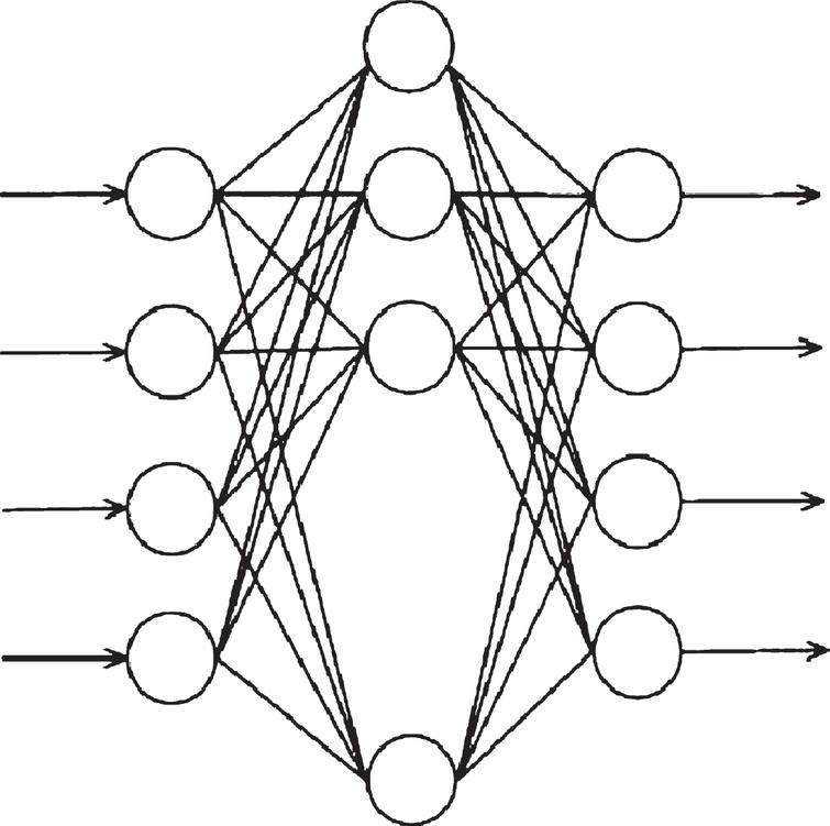 BP neural network structure.