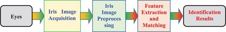 Basic process of iris recognition.