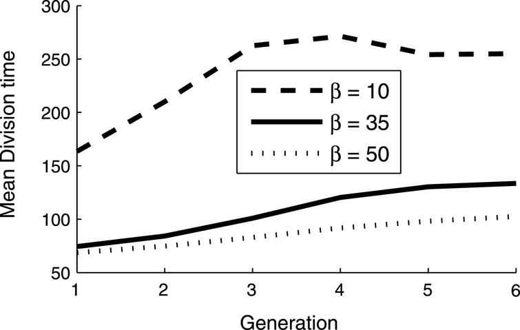 Mean division time of cells as a function of their generation and of β, the number of non-functional proteins necessary for the cell growth rate to be reduced to half the maximum rate.
