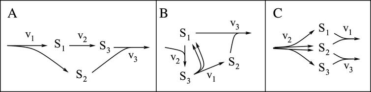 Steady-state equivalent networks. All three networks have identical conservations and steady-state flux distributions. They are members of a single equivalence class as described in the text. (Multiple-headed arrows are used to indicate production of multiple copies of molecules from a single reaction event.